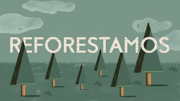 Sofamatch Reforestamos